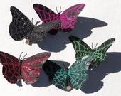 Spider Web Butterflies