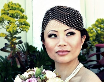 Venetian with Crystals Throughout Bandeau Birdcage Veil