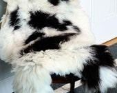 Washable Jacob Sheep Pelt: Black and White Spotted FREE SHIPPING