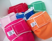 Size Medium Organic Cotton All in One Diaper in Color of Choice