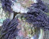 3ea. Dried Lavender Bouquets
