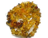 Dominican Amber beads 8 inches strand