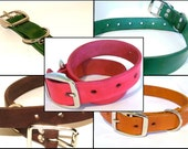 """Leather Dog Collar - 1"""" Wide - Choose a Color"""