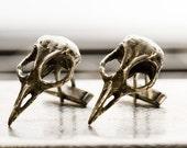 Silver bird skull cuff links