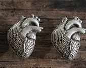 Anatomical Heart Cabinet Hardware, Antique Silver (Made in NYC)