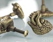Special Quantiy for Yogi Knobs Bronze Heart Gold Small Bird Skull And Ram Skull Knobs