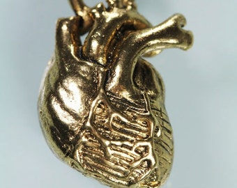 Little Gold Anatomical Heart Necklace (18k gold-plated, antique finish ) matching chain, Made in NYC)