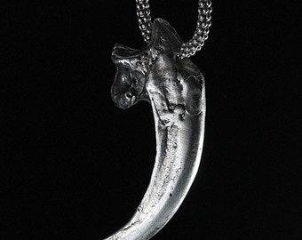 Bald Eagle Talon in Solid Sterling Silver No Chain