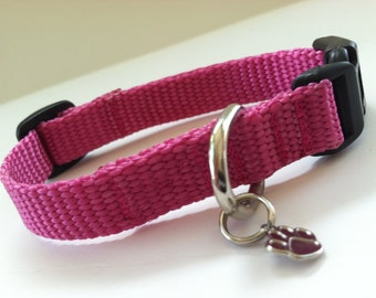 Extra Small Simply Dusty Rose Dog Collar