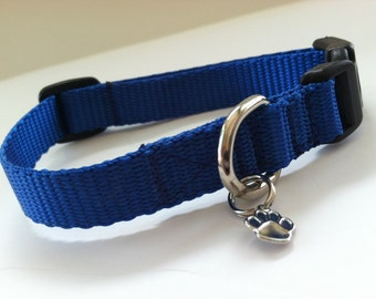 Extra Small Simply Royal Blue Dog Collar