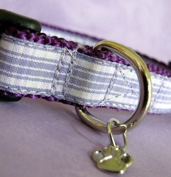 Small Country girl Dog collar