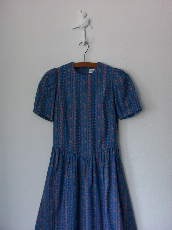 French Floral Dress ... Vintage 1970's Blue Pastoral Frock ... Small / Medium