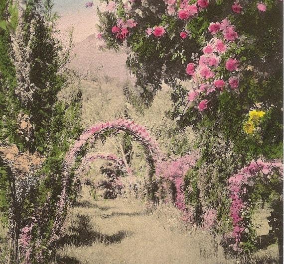 Colorized Photograph of Garden - vintage 1914 German photo