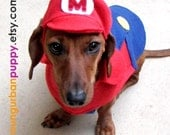 Mario or Luigi costume for Dogs--HAT ONLY