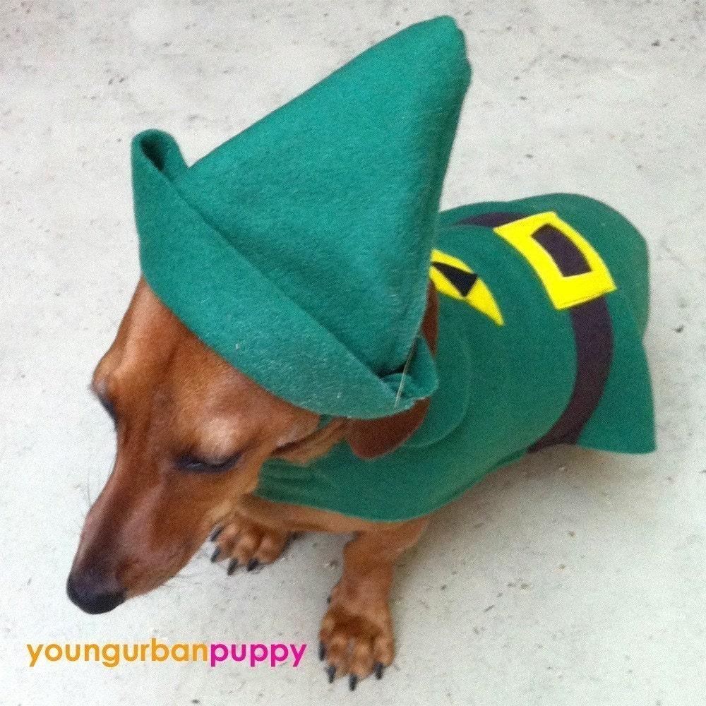 link from nintendo legend of zelda dog costume