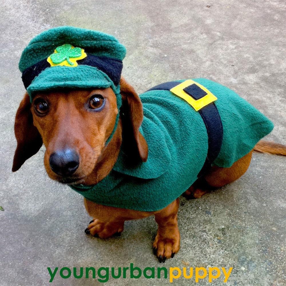 St Patricks Day Leprechaun Costume For Dogs