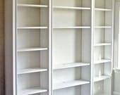 Custom handmade painted wood bookcase