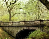 Spring Green in Central Park Photography, Large Wall Art, Glade Arch, New York Print, NYC Art