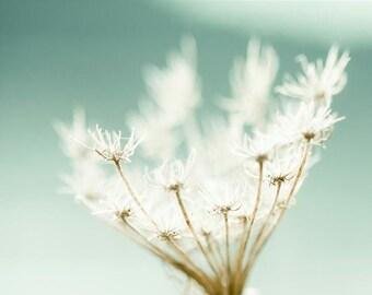 Flower Photography, Mint Green, Cream, Mint Beach House Decor, Pastel Mint Shabby Chic Beach Decor