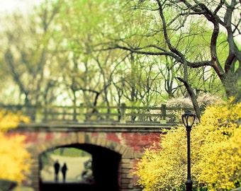 Central Park Print, Green, Yellow,  New York Photography, NYC art, Central Park Bridge, Spring, New York City Print