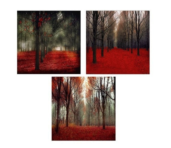Red Rustic Wall Art Set of 3 Prints Nature Photography  Red Forest in Black and Red- Cabin Decor