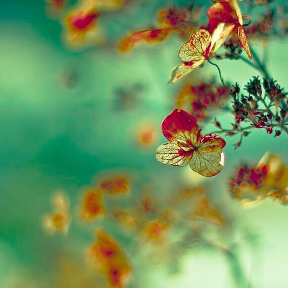 Flower Photography, Hydrangea, Green, Gold, Orange, Copper, Bedroom Decor, Shabby Chic, bedroom wall art