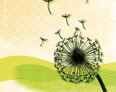 dandelion art print (11x14 matted, flower with seeds flying on green & yellow background)