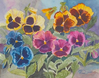 Mixed Pansies Paper Giclee Print Pansy Flowers by Carol Thompson