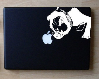 Brit the English Bulldog Sniffs Apple Decal Macbook