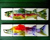 Hand Painted Rainbow Trout or Sockeye Salmon Coasters