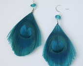Teal Peacock Feather Earrings