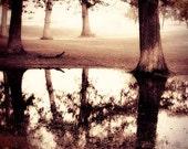 Foggy Woodland Photo - reflection foggy morning sepia woodland forest dreamy