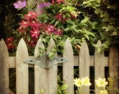Garden Photograph - Wooden Gate, Flowers, Clematis, Country, Trellis - Garden Gate - FirstLightPhoto