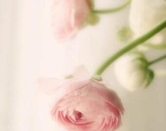 Pale Pink Flower Photograph white vintage pastel love flower nursery decor 8x10