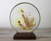Dried Butterfly and Flowers in Brass and Wood Circle Display