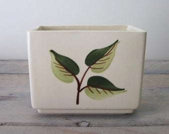 White Planter with Green Leaves