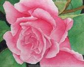 "pink rose watercolor rose archival print of original painting 5"" x 7"""