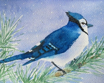 "blue jay watercolor archival print 5"" x 7"""