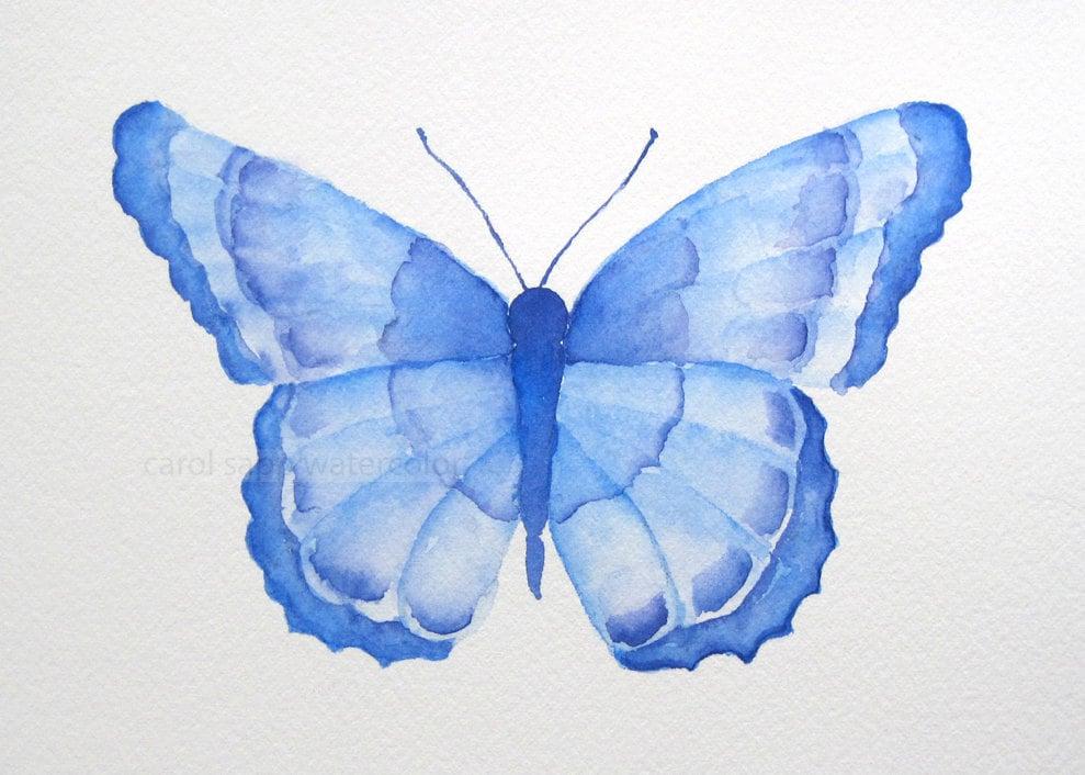 Blue Butterfly Original Watercolor Painting By Carolsapp
