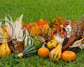 Cornuccopia Photo Magnet