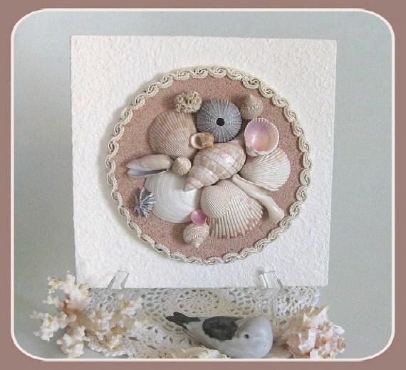 shell home decor seashells ornament sea shells wall