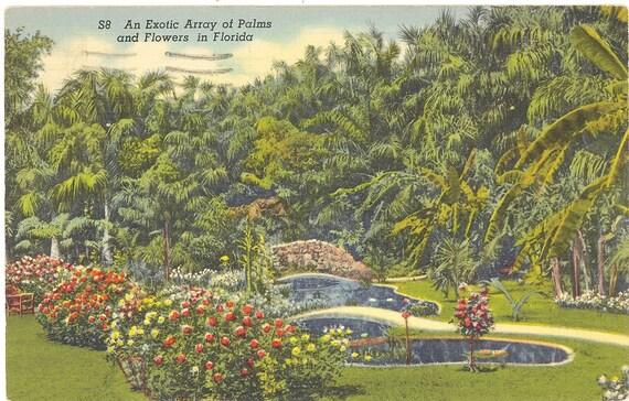 Vintage Florida Postcard St Petersburg Turner 39 S