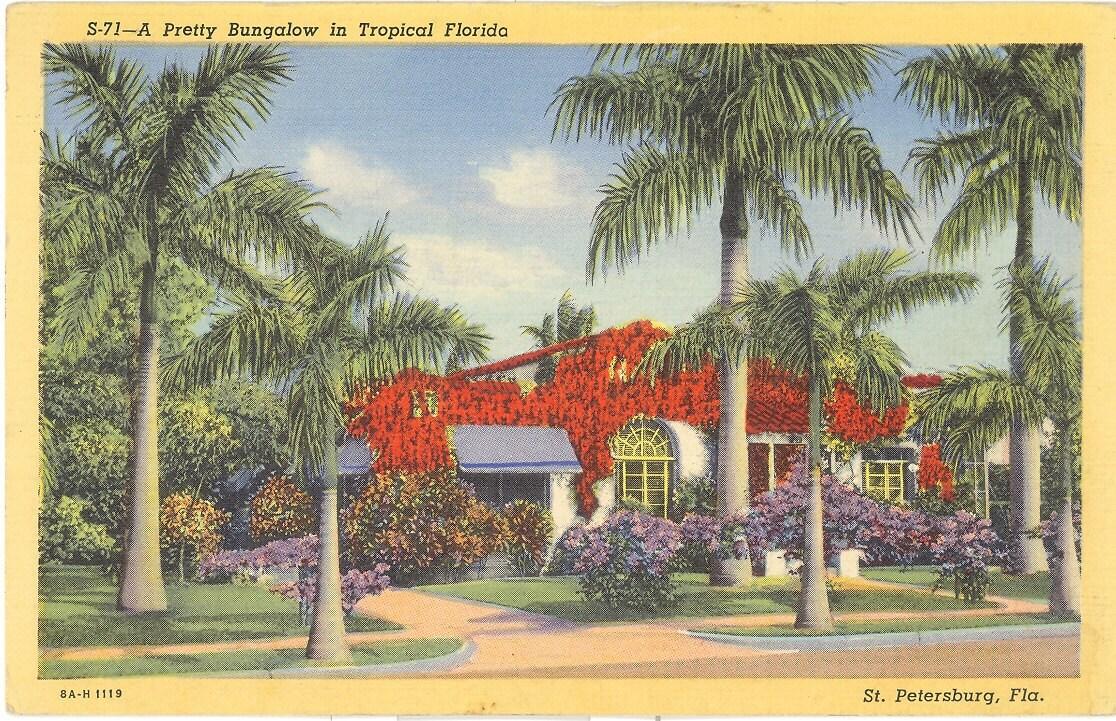 vintage florida postcard st petersburg pretty bungalow