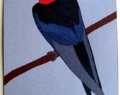 Barnswallow 8 x 10