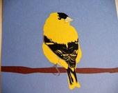 Goldfinch 8x10