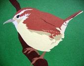 Carolina Wren 8x10 print