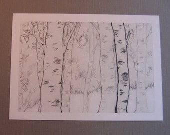 Birches Sketch 5x7 Art print