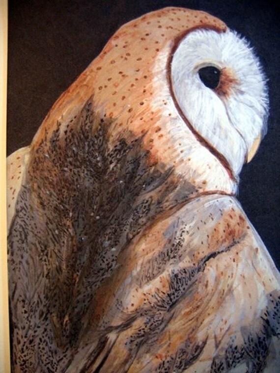 Barn Owl 5x7 Art Print