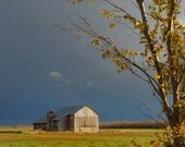 Rustic Barn Photograph Autumn Late Fall Storm Sky Golden Leaves Weathered 17x20 Photograph