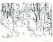 RESERVED Original drawing / ink on paper / 5x7 inches